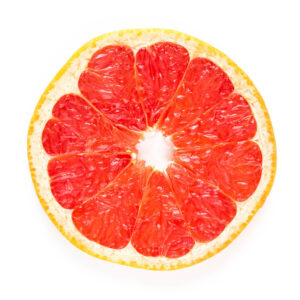 Round slice of fresh Grapefruit
